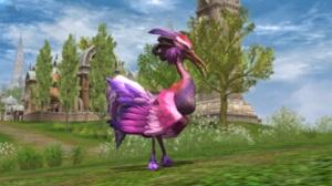 《血盟荣耀》鸟